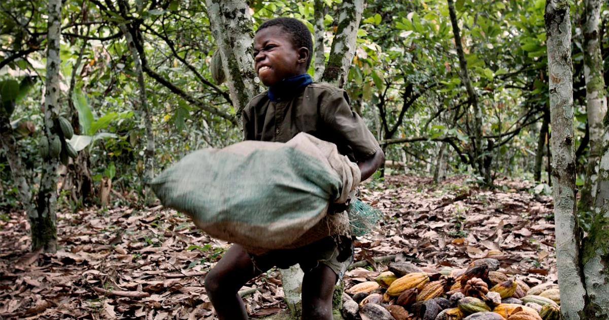 Exploração de trabalho infantil em Gana